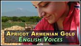 Apricot Voices RENT